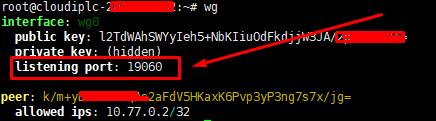 IPLC线路VPS使用wireguard搭建游戏加速器